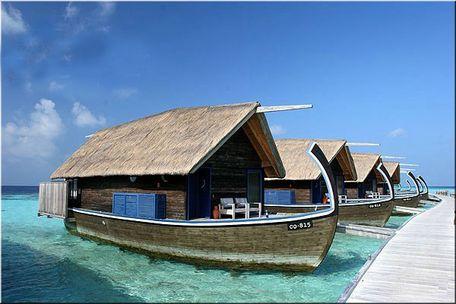 马尔代夫星空海滩_马尔代夫海滩婚礼